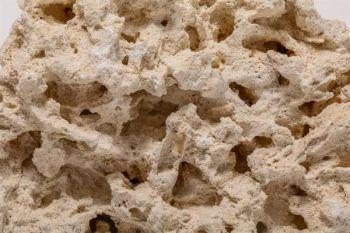 CaribSea South Seas Shelf Rock 18,14 kg Gestein