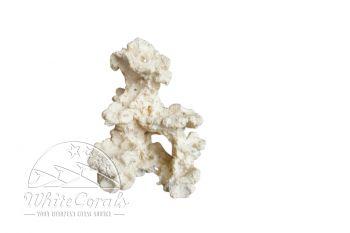 Aquaroche Mini Recif h 20 cm