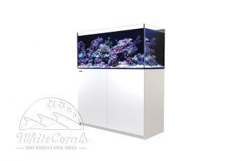 Red Sea Reefer XL 425 Aquarium schwarz oder weiß