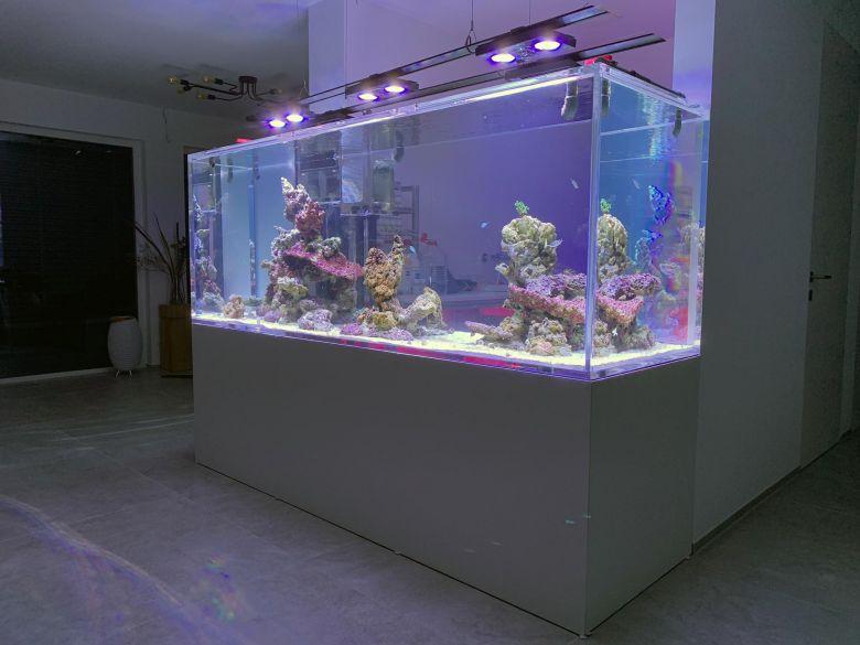 1.500 L Acrylglasaquarium