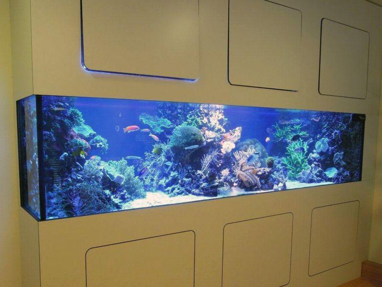 Aquarium in der Sophienklinik Stuttgart