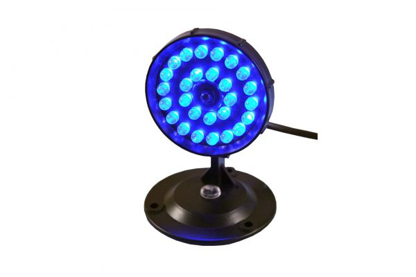 Aqua Light Mini LED Mond blau
