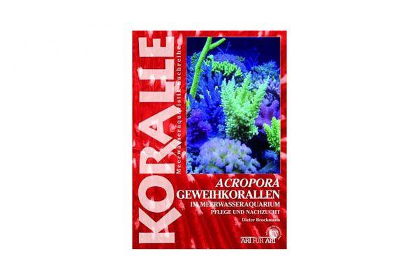 KORALLE - Acropora Geweihkorallen im Meerwasseraquarium - Dieter Brockmann