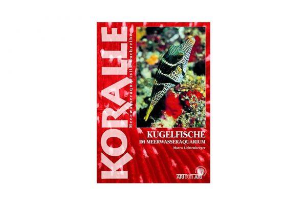 KORALLE - Kugelfische im Meerwasseraquarium - Marco Lichtenberger