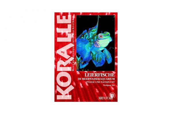 KORALLE - Leierfische im Meerwasseraquarium - Wolfgang Mai