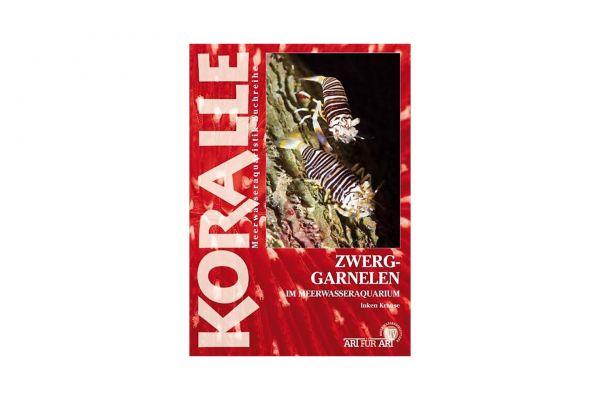 KORALLE - Zwerggarnelen im Meerwasseraquarium - Inken Krause