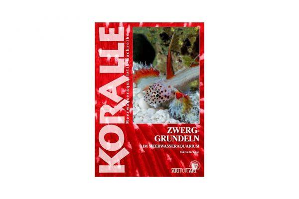 KORALLE - Zwerggrundeln im Meerwasseraquarium - Inken Krause