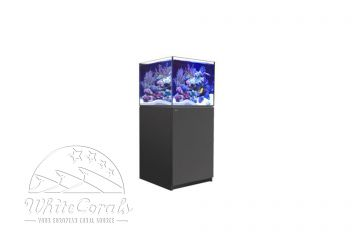 Red Sea Reefer XL series and Xl Deluxe series
