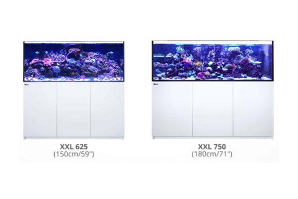 Red Sea Reefer XXL Serie und XXL Deluxe Serie