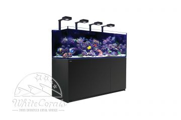 Red Sea Reefer XXL series and XXL deluxe series