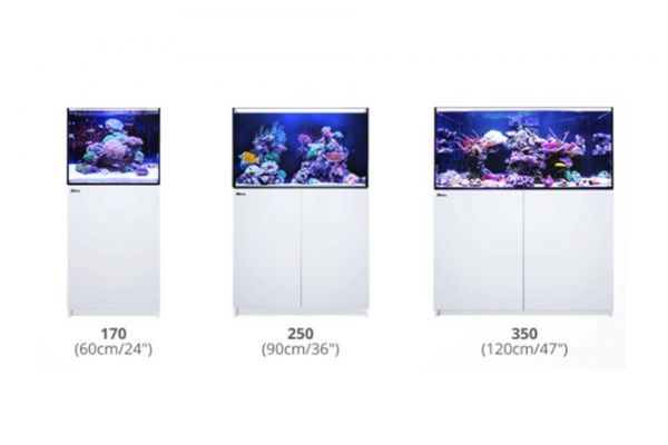 Red Sea Reefer und Reefer-Deluxe Serie