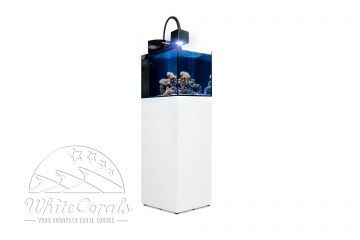 Aqua Medic Blenny Qube  Weiß-Hochglanz
