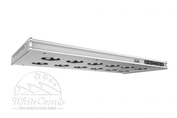 Arcadia Series 6 LED Marine Leuchte