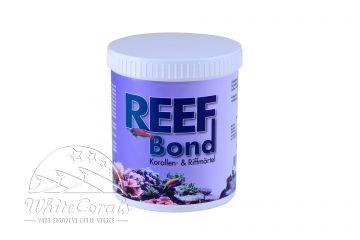 AMA Reef Bond