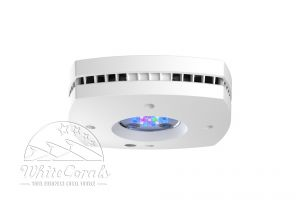 AI Prime 16HD Reef white