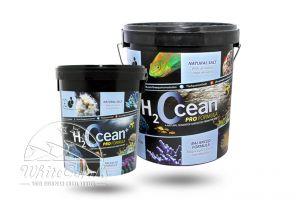 D-D H2Ocean Salz