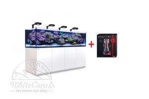 Red Sea Reefer 3XL 900 deluxe black or white