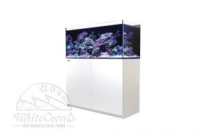 Red Sea Reefer XL 425 Aquarium black or white