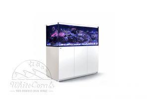 Red Sea Reefer XXL 625 black or white