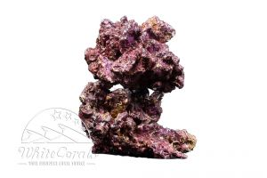 Real Reef Rocks Medium/Large (per kg)