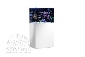 Aqua Medic Armatus Aquarium 250, 300, 400 oder 450 Liter