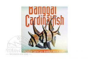 Banggai Cardinalfish Hardcover