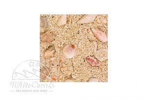 CaribSea Aragamax Grand Bahamas Biome 13,61 kg