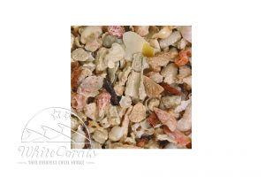 CaribSea Seaflor Aruba Puka Shell Fine Sand
