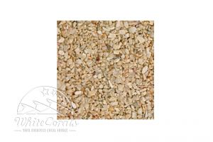 CaribSea Seaflor Special Grade Sand