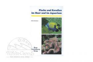 Fische und Korallen im Meer und im Aquarium (Dieter Brockmann)