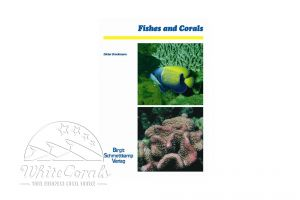 Fishes and Corals (Englisch)