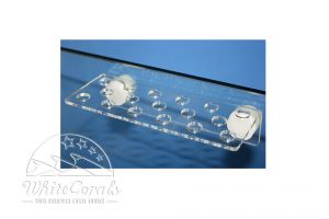 Knepo Coral Rack XS bis 10mm Glassdicke