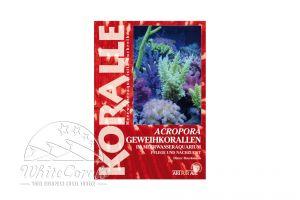 KORALLE - Acropora Geweihkorallen im Meerwasseraquarium (Dieter Brockmann)
