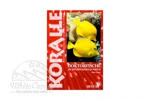 KORALLE - Doktorfische im Meerwasseraquarium (Ellen Thaler)