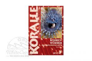 KORALLE - Röhrenwürmer im Meerwasseraquarium (Daniel Knop)