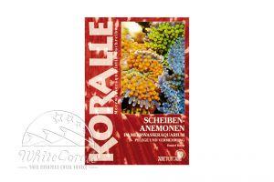 KORALLE - Scheibenanemonen im Meerwasseraquarium (Daniel Knop)