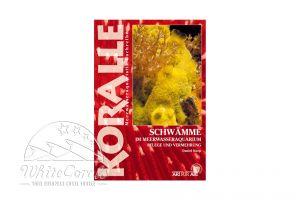 KORALLE - Schwämme im Meerwasseraquarium (Daniel Knop)