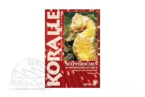 KORALLE - Seepferdchen im Meerwasseraquarium (Wolfgang Mai)