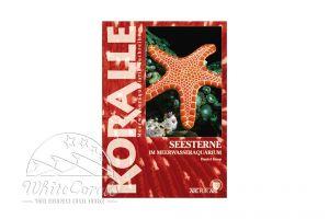KORALLE - Seesterne im Meerwasseraquarium (Daniel Knop)