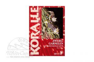 KORALLE - Zwerggarnelen im Meerwasseraquarium (Inken Krause)