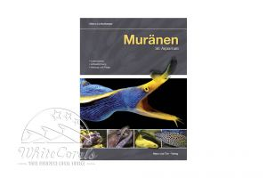 Muränen im Aquarium (Marco Lichtenberger) (German)