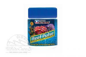 Ocean Nutrition Reef Pulse 120 g