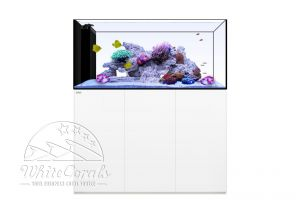 Waterbox Aquariums Peninsula