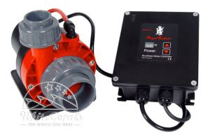Royal Exclusiv Red Dragon 3 Speedy Pumpe 80 Watt / 8,0 m³ AKB AntiKalkBypass