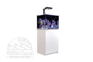 Red Sea Reefer 170 Deluxe Complete System