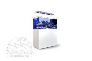 Red Sea Reefer Peninsula 500 Deluxe