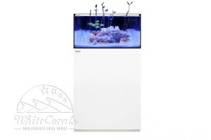 Waterbox Aquariums Frag