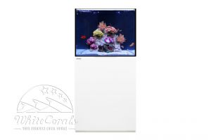 Waterbox Aquariums Reef
