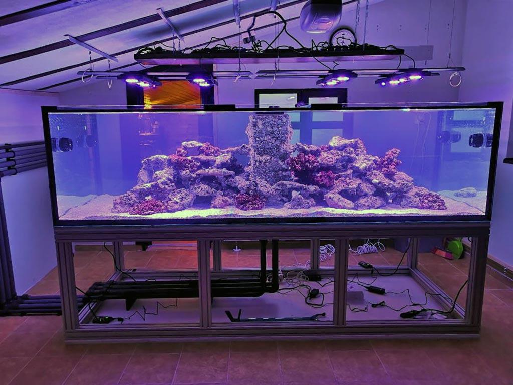 3.000 L Aquarium mit separatem Technikraum