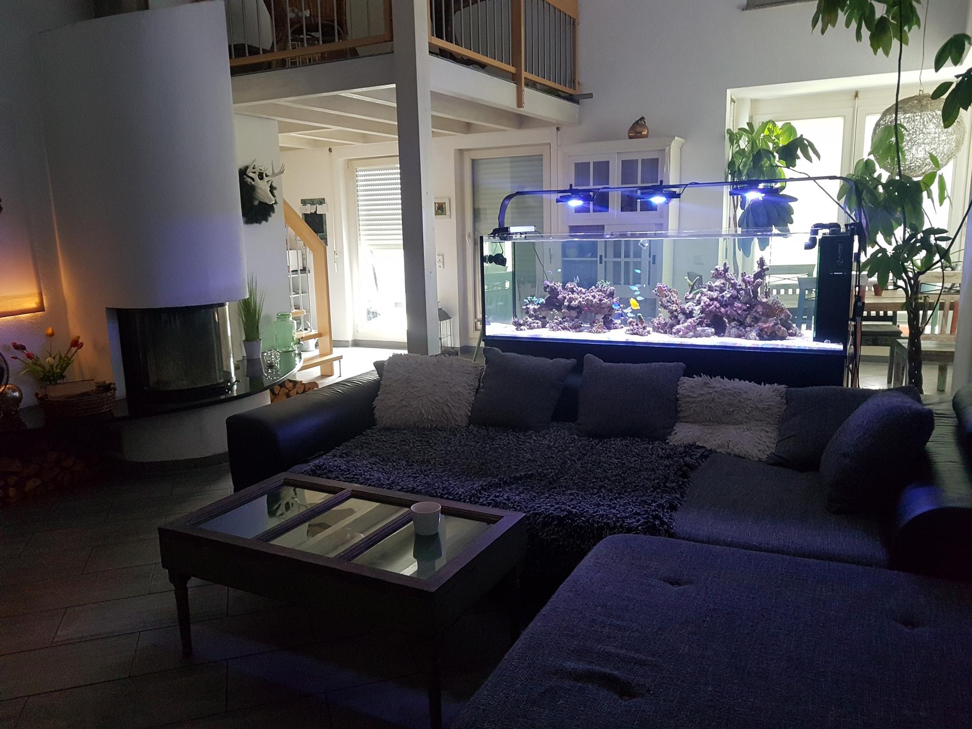 Raumteiler 760 Liter im Wohnbereich